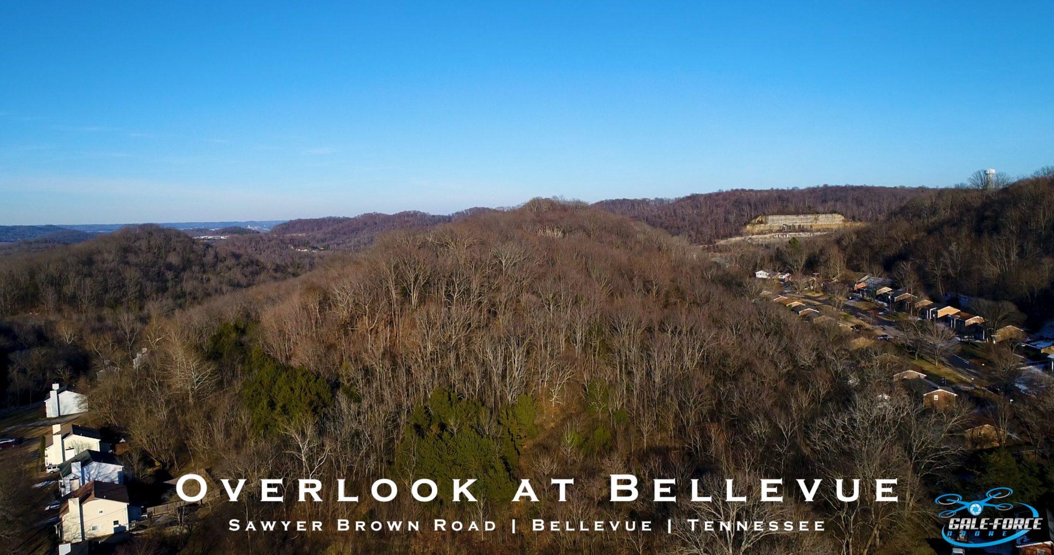 galeforcedrone.com overlook at bellevue