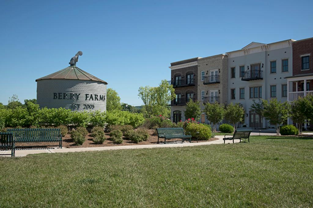 berry farms homes for sale