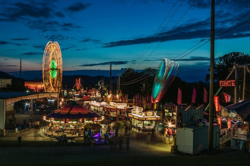 williamson county fair